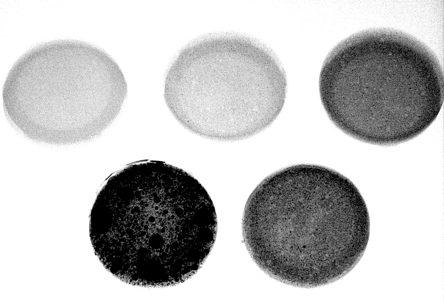 various concentrations of Barium sulfate inside silicone samples